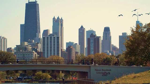 Lincoln Park Chicago rentals