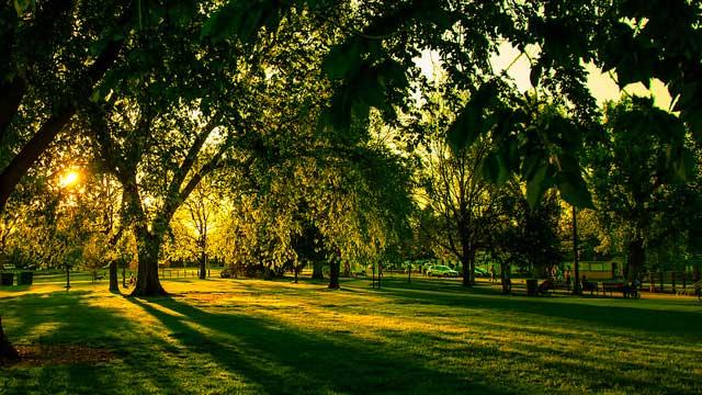 Washington park rentals